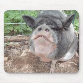 Happy Mini pig Mouse Pad