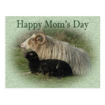 Happy Mom's Day black lamb Postcard