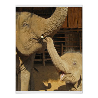 Happy Mother and Baby Elephant Poster