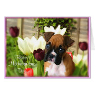 Happy Mother-in-law day boxer greeting card