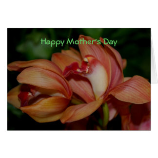 Happy Mother s Day Greeting Cards