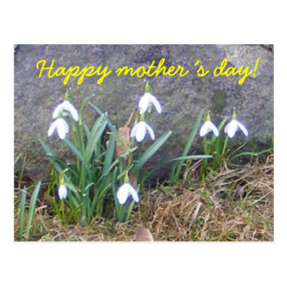 Happy mother´s day! postcard