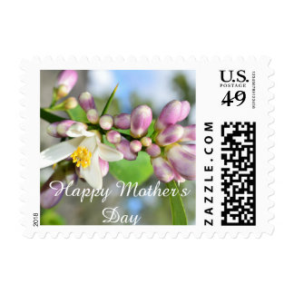 Happy Motherday (lemon blossoms) Postage