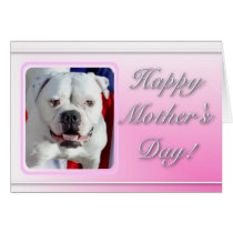 Happy Mother's Day American Bulldog greeting card