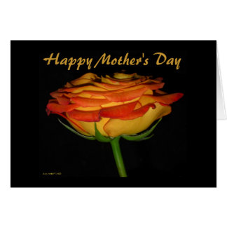 Happy Mother's Day, Beautiful Rose Card