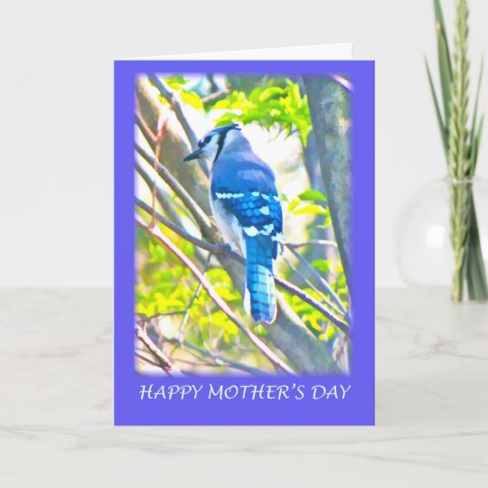 Happy Mother's Day Blue Jay Greeting Card