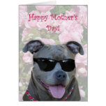 Happy Mother's Day Blue pitbull with glasses Greeting Cards