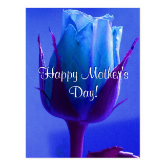 Happy Mother's Day Blue Rose Post Cards