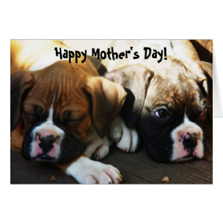 Happy Mother's Day Boxer puppies greeting card