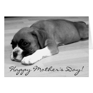 Happy Mother's Day Boxer puppy greeting card