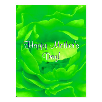 Happy Mother's Day Bright Green  Rose Postcard