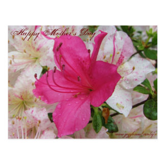 Happy Mother's Day card Post Cards