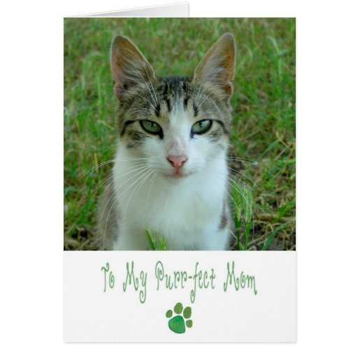 Happy Mother's Day Card with Nice Female Cat