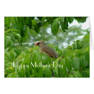Happy Mother's Day Cardinal Card