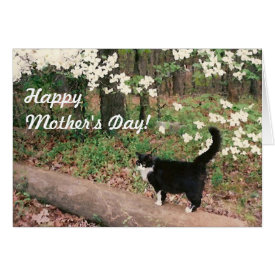 Happy Mother's Day! Cards at Zazzle