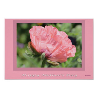 Happy Mother's Day Cards, Gifts Poster