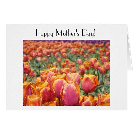Happy Mother's Day! Cards Pink Orange Tulip Flower