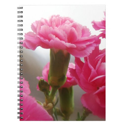 Happy Mother's Day - Carnation Spiral Note Book