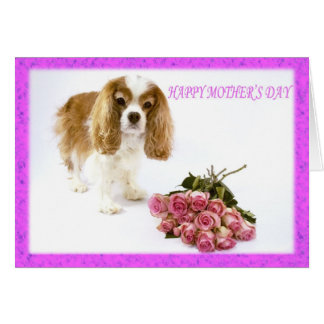 Happy Mother's Day Cavalier With Rose Bouquet Card