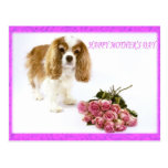 Happy Mother's Day Cavalier With Rose Bouquet Postcard