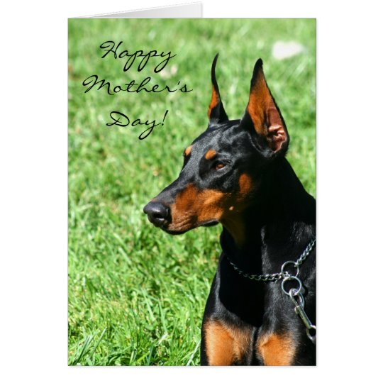 Happy Mother's Day Doberman greeting card