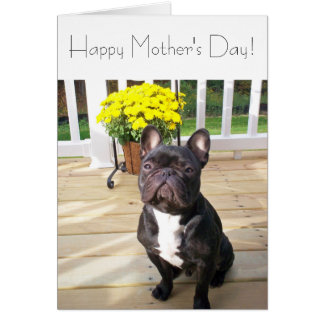 Happy Mother's Day French Bulldog w/Flowers Card
