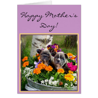 Happy Mother's day French bulldogs greeting card