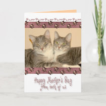 Happy Mother's Day from Both of Us with Cats Card