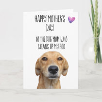 Happy Mother's Day From the Dog Funny Card