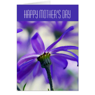 Happy Mother's Day - General - Purple Cineraria Card