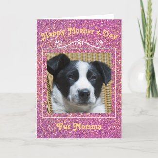 mother's day, mom, fur momma, dog, pet, greeting card, template, card