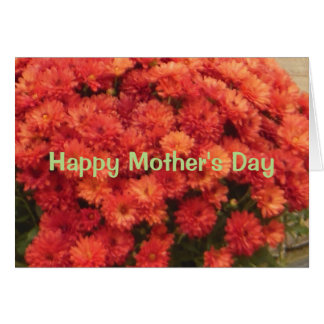 Happy Mother's Day Hardy Mums Card