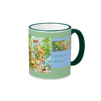 Happy Mother's Day - Let the Sun Shine In ! Mug