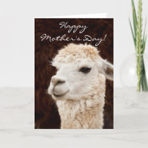 Happy Mother's Day llama greeting card