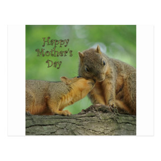 Happy Mother's Day - Mom and Baby Squirrel Postcard
