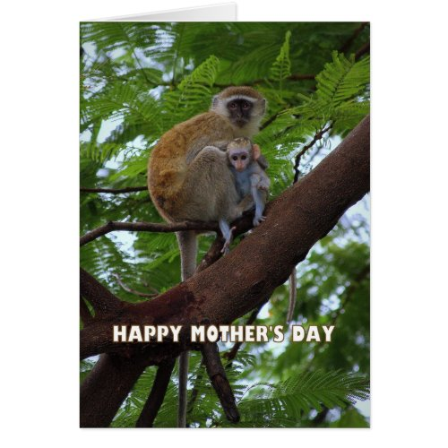 Happy Mother's Day Monkey Mother and Child Humor Card
