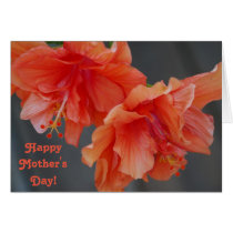 Happy Mother's Day Peach Hibiscus
