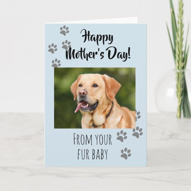 Happy Mother's day Photo Dog Cat Pet Fur Baby Card