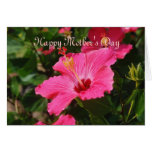 Happy Mother's Day Pink Striped Hibiscus Card