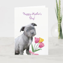 Happy Mother's Day Pitbull puppy card