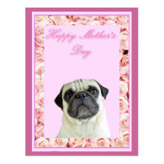 Happy Mother's Day pug postcard