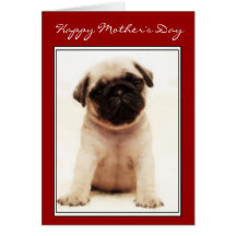 Happy Mother's Day Pug puppy greeting card