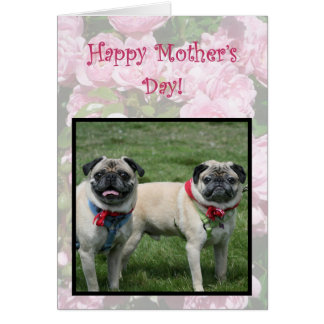 Happy Mother's day pugs greeting card