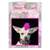 Happy Mother's Day Punk Chihuahua greeting card