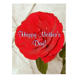 Happy Mother's Day Red Rose Postcard