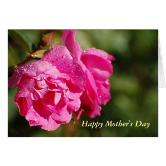 Happy Mother's Day Roses