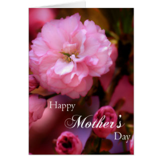 Happy Mothers Day Spring Pink Cherry Blossoms Card