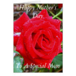 Happy Mother's Day, To A Special Mom Greeting Card