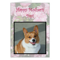 Happy Mother's Day Welsh Corgi greeting card