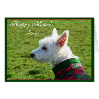 Happy Mother's Day Westie greeting card